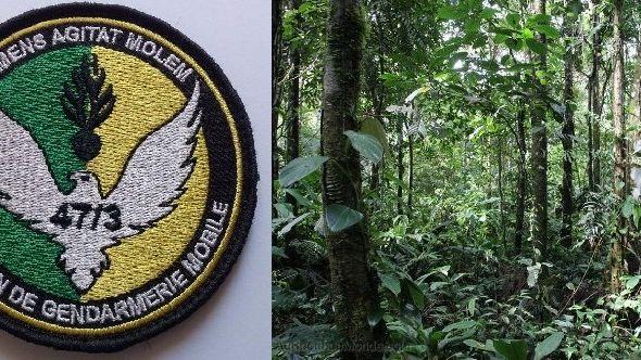 La jungle de Guyane est éprouvante pour les gendarmes de l'Opération Harpie.