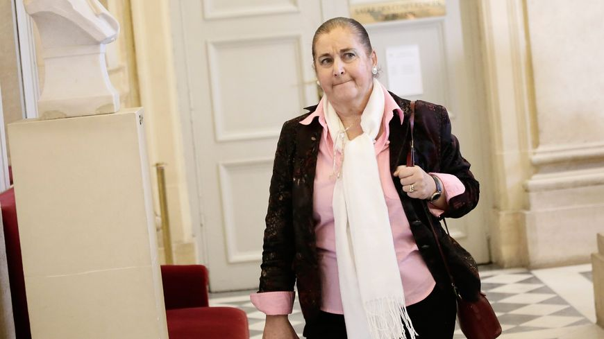 Martine Faure à l'assemblée nationale