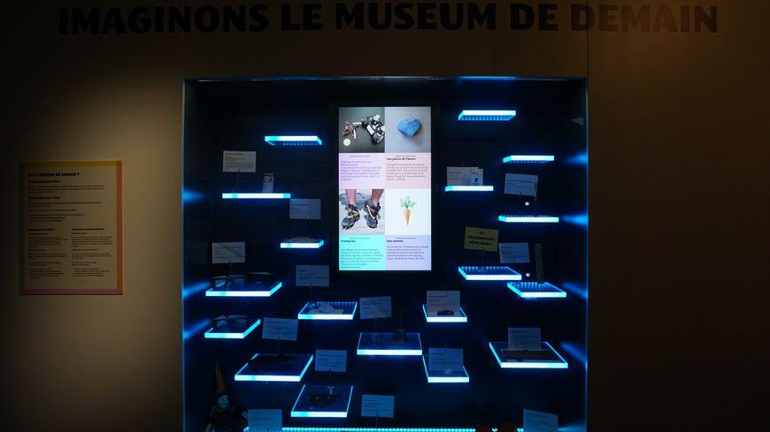 La vitrine du Muséum de demain à Toulouse