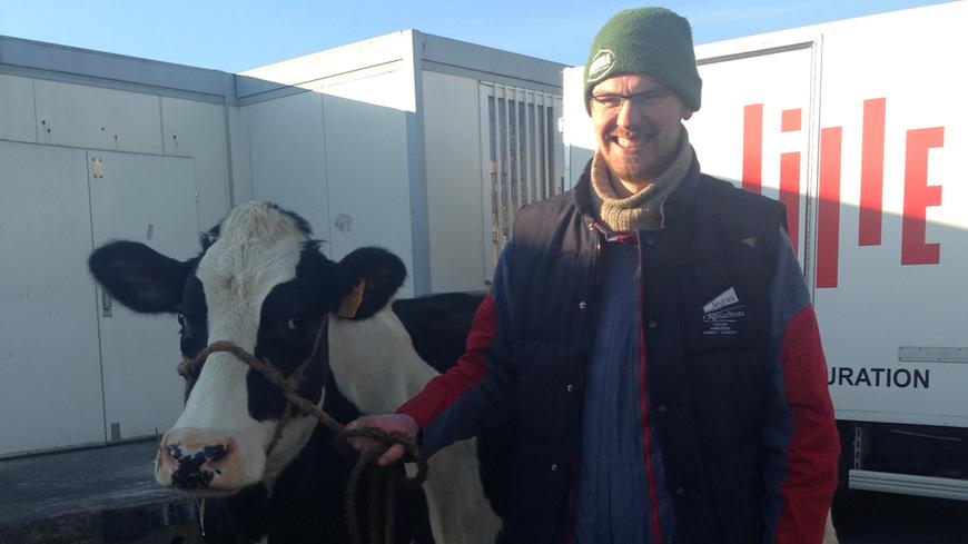 Une vache et son veau, huit cochons devant la cuisine centrale de Lille
