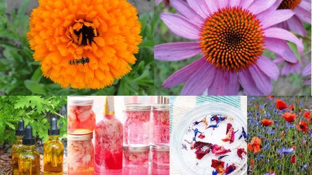 fleurs et cosmétiques - Aucun(e)