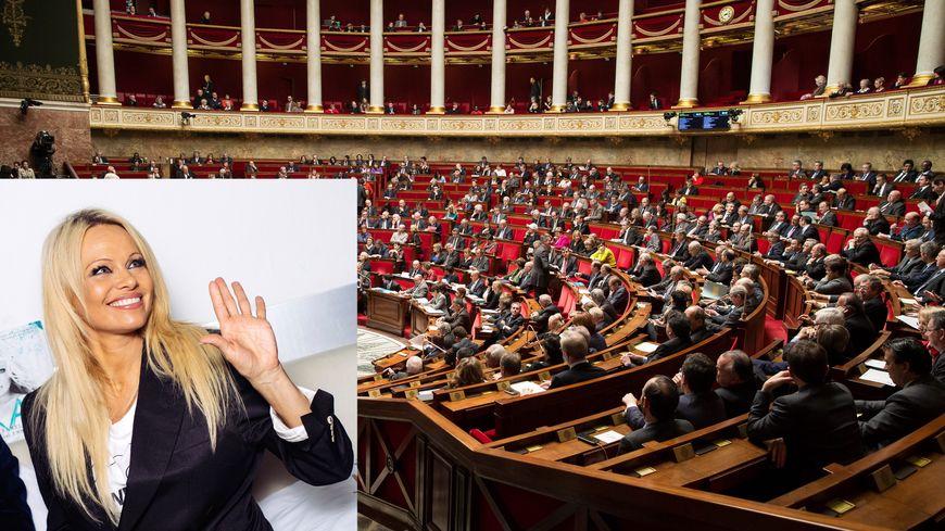 Pamela Anderson sera mardi devant l'Assemblée pour dire non au gavage d'oie