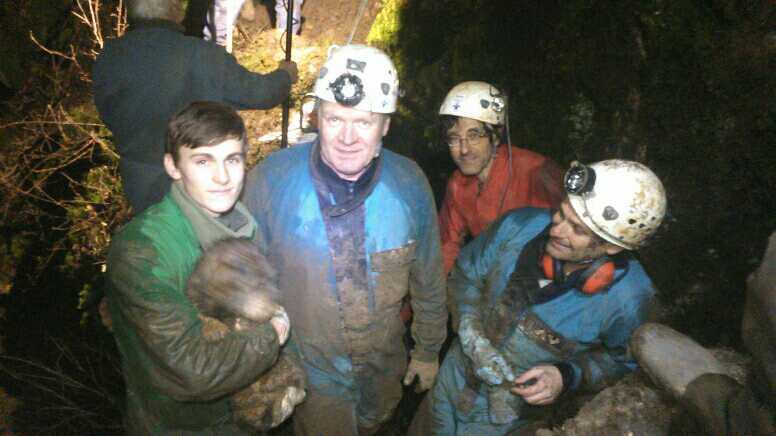 Le chien Ben sauvé par les spéléologues