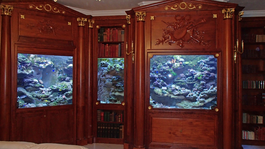 video des aquariums de r ve fabriqu s dans la sarthe. Black Bedroom Furniture Sets. Home Design Ideas