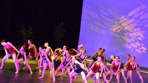Spectacle 2015 - Ecole de danse Popard à Bayonne