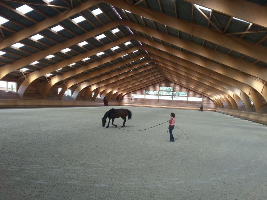 Parmi les installations les plus spectaculaires du Haras des Grillons, ce manège à l'architecture très audacieuse. - Radio France