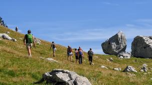 Accompagnateurs en montagne