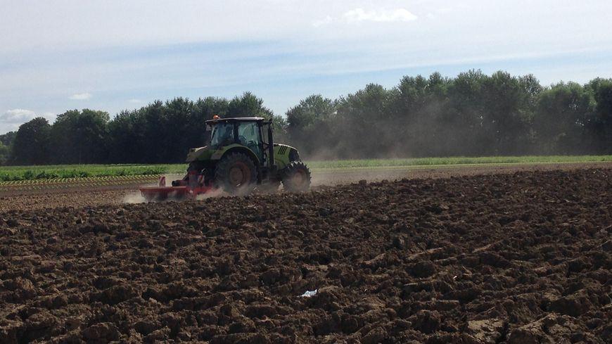 Les agriculteurs franciliens peuvent tout juste reprendre le travail dans les champs après les inondations du printemps. 220 exploitations ont été touchées. 1.500 hectares de terres inondés.