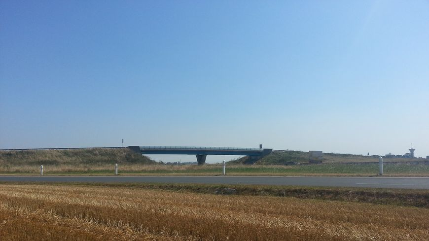 La parcelle de 2,5 hectares autour de l'échangeur de Secqueville en Bessin a été semée en blé et moissonnée