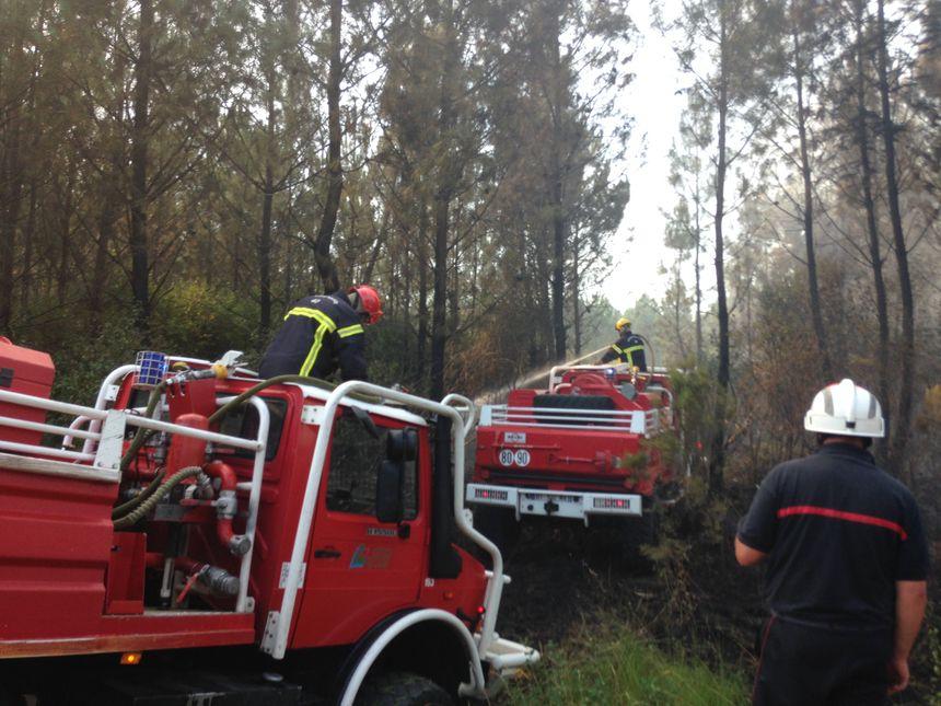 L'incendie de Mano a mobilisé plus de 100 pompiers ce mercredi © Radio France - clément guerre - Radio France