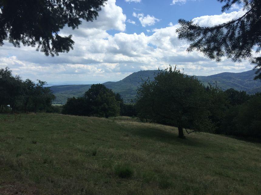 Des paysages magnifiques à découvrir à La Vancelle - Radio France