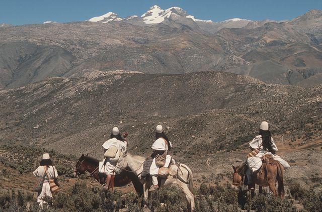 Groupe de personnes Arhuaco qui regarde le paysage de leurs terres ancestrales dans la chaîne de montagnes de la Sierra Nevada de Santa Marta , Santa Marta , Colombie, 2008.