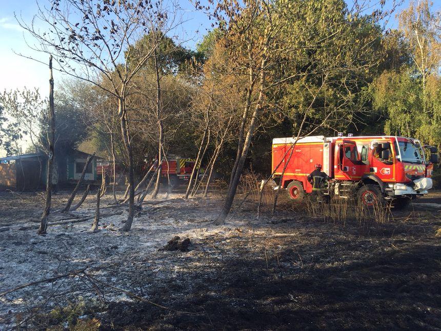 La forêt a brûlé à Monsec en Dordogne - Radio France