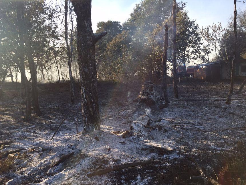 Le feu a pris près de la route - Radio France