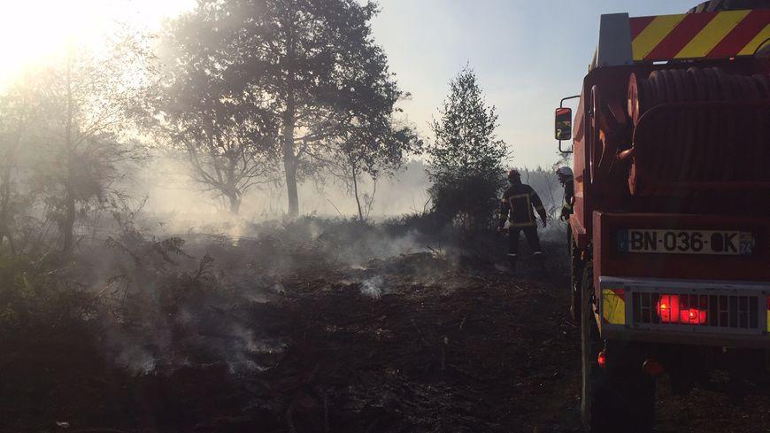 Les pompiers en action à Monsec