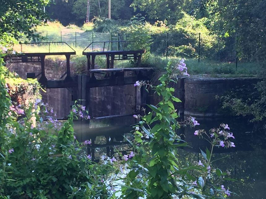 Le tour d 39 alsace en 40 jours diebolsheim herbsheim for Ambiance jardin diebolsheim