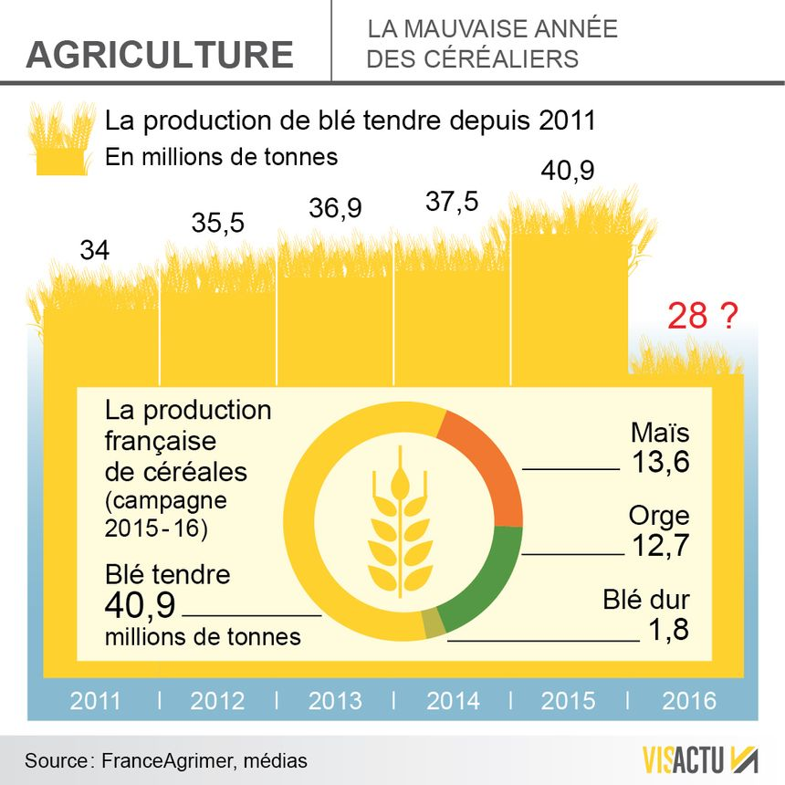 La production de blé pourrait être la pire depuis 30 ans - Aucun(e)