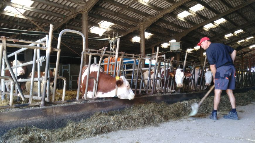 Hubert Grayel élève une centaine de vaches laitières à Chevrières dans les Monts du Lyonnais