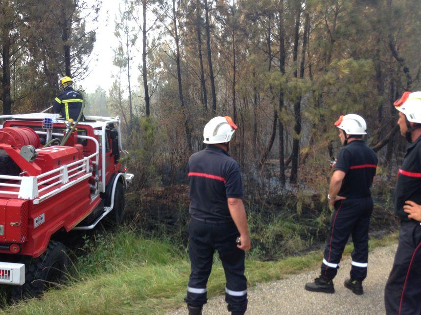 Moins de 20 minutes après le départ de feu à Mano, les pompiers étaient sur place. L'incendie a pu être maîtrisé vers 18 heures ce mercredi. - Radio France