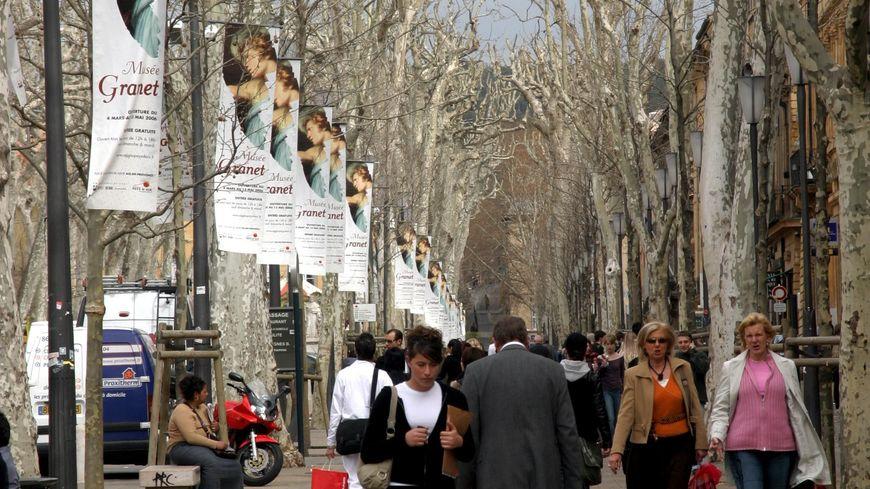 Des platanes à Aix-en-Provence (photo d'illustration)
