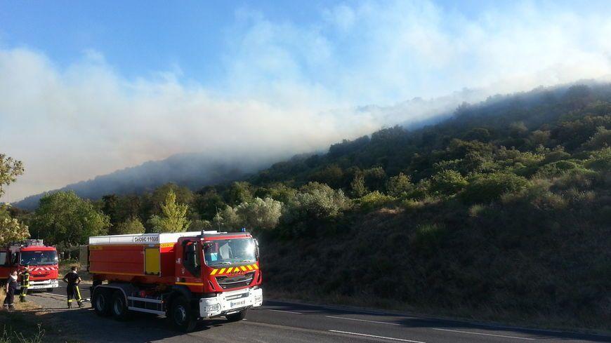 Une vingtaine d'hectares de végétation a brûlé - image d'illustration