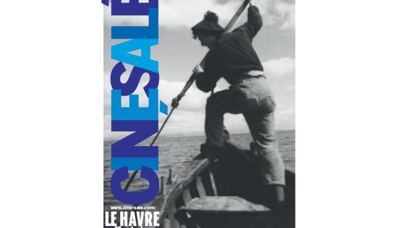 Affiche ciné salé 2016