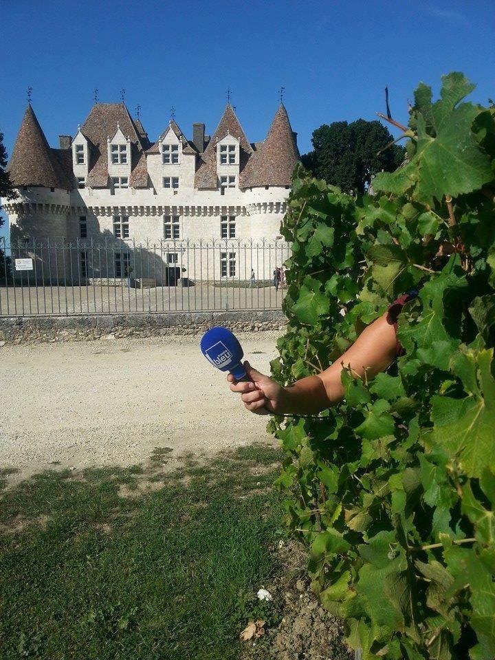 Montbazillac - Radio France