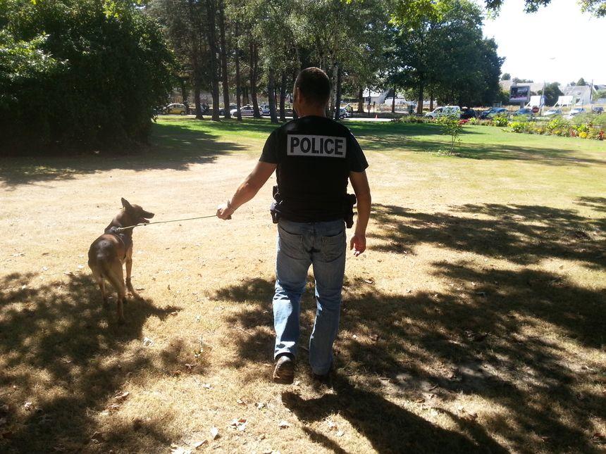 Les chiens de la brigade cynophile sont spécialement dressés pour flairer la drogue cachée dans les véhicules. - Radio France