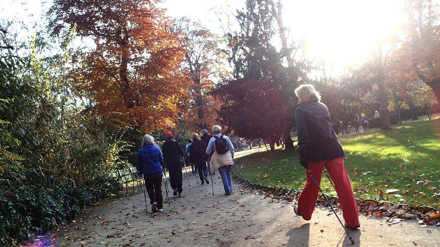 En Sarthe, près de 28 000 personnes adhèrent à l'association Générations Mouvement qui propose de nombreuses activités