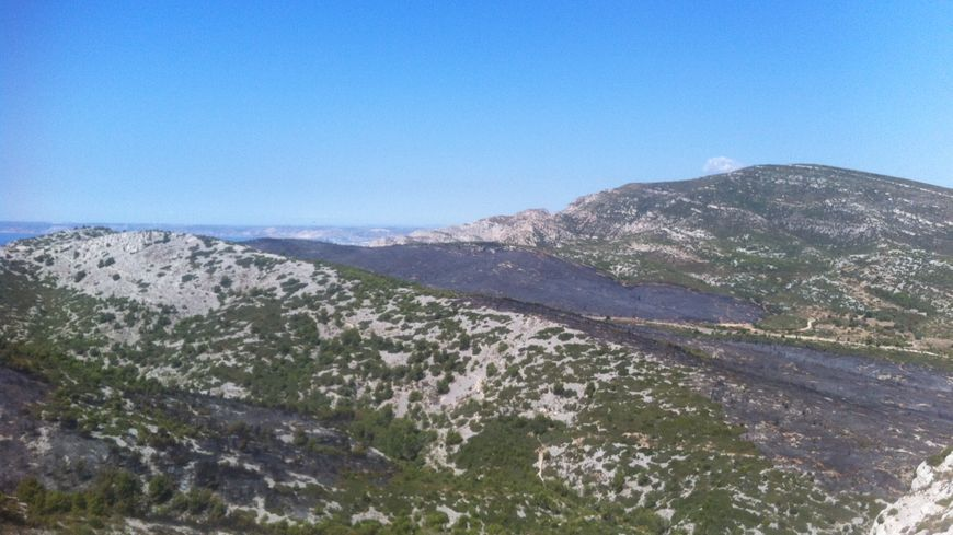 La route de la Gineste en cendres au lendemain de l'incendie du 5 septembre 2016