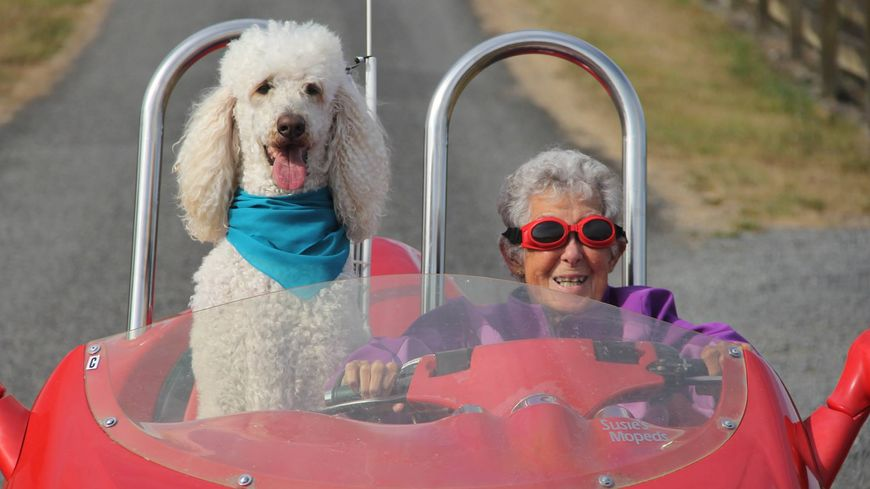 Le 30 août dernier, Miss Norma apparaît en voiture avec un chien sur sa page Facebook.