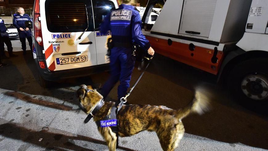 La ville d'Avingon supprime sa brigade canine (illustration)