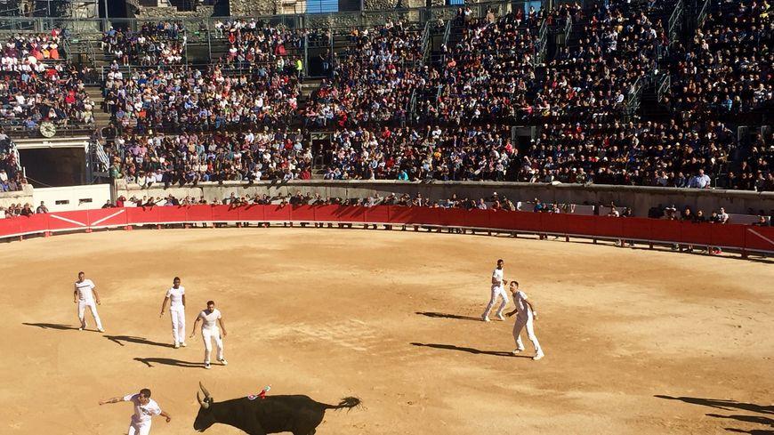 La finale du Trophée des As dans les arènes de Nîmes