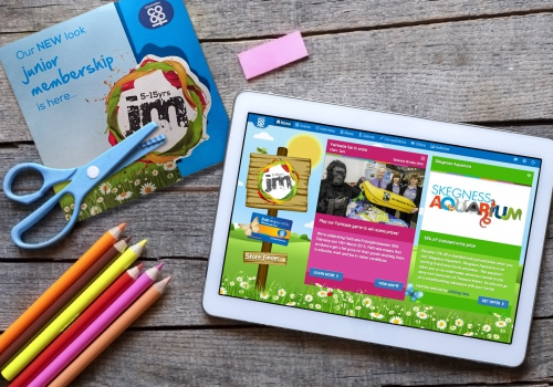 Lincolnshire Co-op Juniors Websites