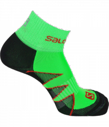 Salomon Citytrail TM gecko green