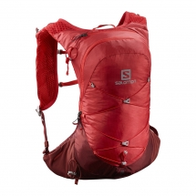 Salomon XT 10 goji berry