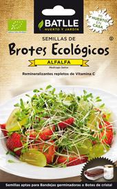 Semillas de brotes - Alfalfa