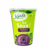 Yogur De Arandanos Bio 400g