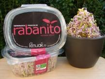 Germinado tipo I (Rabanito daikon, alfalfa...)