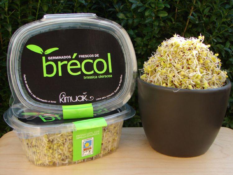 Germinado de Brócoli 50g