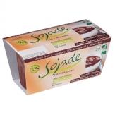 Yogur Chocolate Bio  2x100 gr