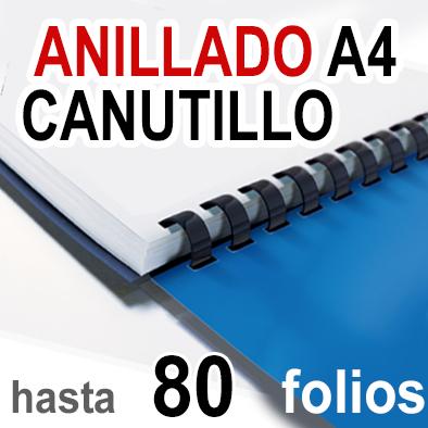 Anillado en Canutillo - A4 -Hasta 80 folios