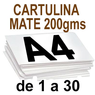 Papel Especial CARTULINA MATE 200 grm de 1 A 30  copias