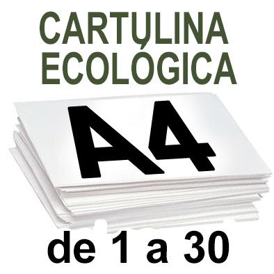 Papel Especial ECOLOGICO  de 1 A 30 copias
