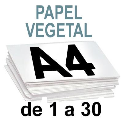 Papel Especial VEGETAL de 1 A 30 copias