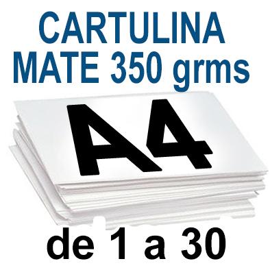 Papel Especial CARTULINA MATE 350 grm de 1 A 30 copias