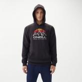 Mountain logo hoodie