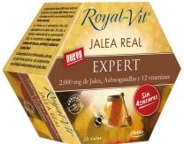 Jalea Real Expert Royal Vit 20 viales