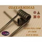 GUAYARMINAS - LADY COILS