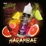 HARAMBAE 50ML - TWELVE MONKEYS